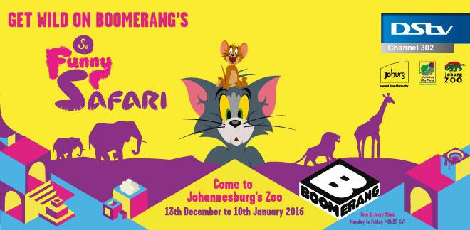 so funny safari with boomerang