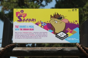 taz-devil-bear